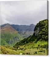 Mountain Path Vert Canvas Print