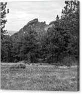 Mountain Peak Through The Trees In Black And White Canvas Print