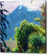Mountain Rain Forrest Canvas Print