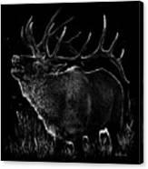 Mountain Reveille Canvas Print