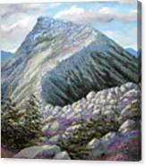 Mountain Ridge Canvas Print