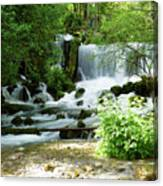 Mountain River Spring Canvas Print
