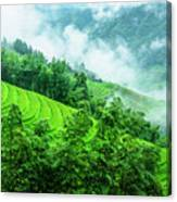 Mountain Scenery In Mist Canvas Print