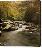 Mountain Stream 2 Canvas Print