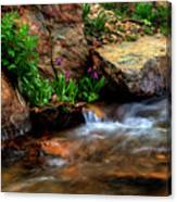 Mountain Stream Garden Canvas Print