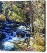 Mountain Stream In Fall Canvas Print