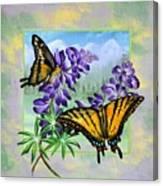 Mountain Swallowtail Canvas Print