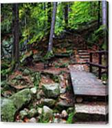 Mountain Trail With Staircase In Autumn Forest Canvas Print
