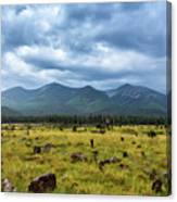 Mountain View After Rain Canvas Print