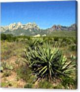 Mountain View Las Cruces Canvas Print