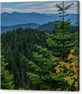 Mountains Around Priest Lake Canvas Print