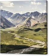 Mountains In Denali National Park Canvas Print