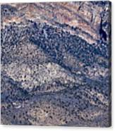 Mountainside Abstract - Red Rock Canyon Canvas Print