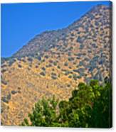 Mountainside From Wealthy Neighborhood Above Santiago-chile Canvas Print