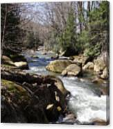Mountainside Stream Canvas Print
