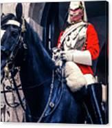 Mounted Life Guard Canvas Print