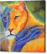 Mountian Lion 1 Canvas Print