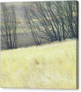Moving On From Virginia Dale Canvas Print