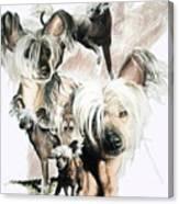 Mowgli Canvas Print