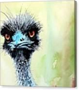 Mr. Grumpy Canvas Print