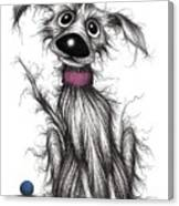 Mr Mucky Paws Canvas Print