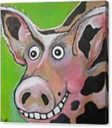 Mr Pig Canvas Print