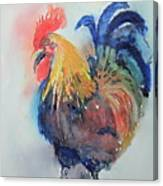 Mr Rooster Canvas Print