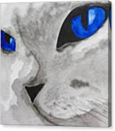 Mr Silver Canvas Print