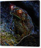 Mr Toads Wild Eyes Canvas Print