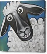 Mrs Sheep Canvas Print