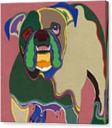 Ms Diva The English Bulldog Canvas Print