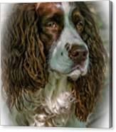 Ms Kaya 2 - Vignette Canvas Print
