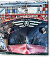 Msc Diana Canvas Print