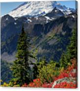 Mt. Baker Autumn Canvas Print