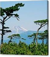 Mt. Fuji ... Canvas Print