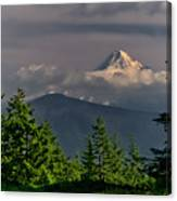 Mt Hood From Grassy Knoll Canvas Print