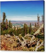 Mt. Howard, Wallowa Lake Canvas Print