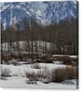 Mt Moran From Cattleman's Bridge Site Canvas Print