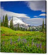 Mt Rainier And Wildflowers Canvas Print