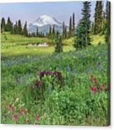 Mt Rainier Meadow Flowers Canvas Print