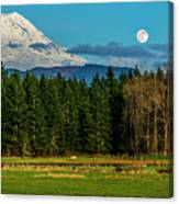 Mt Rainier Moonrise,wa Canvas Print
