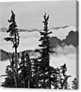 Mt Rainier National Park Canvas Print