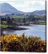 Muckish ,irish Landscape  Canvas Print