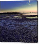 Muddy Beach Canvas Print