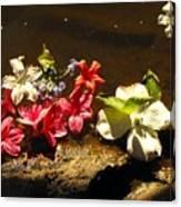 Muddy Flowers  Canvas Print
