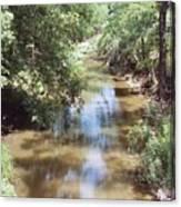 Muddy Hickory Creek  Canvas Print