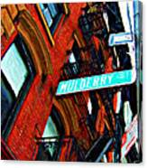 Mulberry Street Sketch Canvas Print
