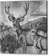 Mule Deer Heaven Canvas Print