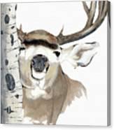 Mulie Buck And Aspen Canvas Print