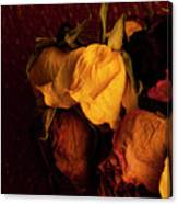Multicolored Roses Wilting  Canvas Print